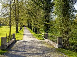 Wilhelmina Busch-Woods hinterließ Bernried einen der schönsten Landschaftsparks Deutschlands mit rund eineinhalb Kilometern Seeufer. (Foto: Katja Sebald)