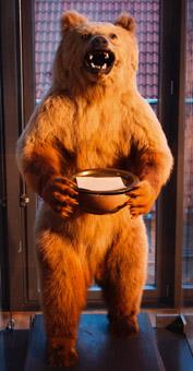 Der ausgestopfte Braunbär stand früher in der Villa der Familie Mann.