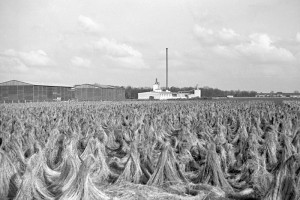 """Für die Zwangsarbeiterinnen wurde die ländliche Idylle der Flachsröste zur """"Hölle von Lohhof. (Foto: Peter Vahlensieck)"""