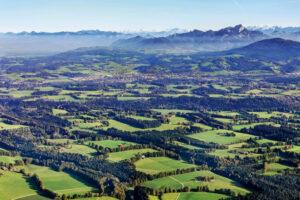 Die teils jahrhundertealten Hage bei Miesbach erfüllen viele Funktionen: Grenzzaun, Windschutz, Holzquelle, Biotopvernetzung – nicht zuletzt auch Augenweide.