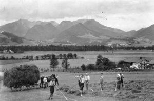Heuernte auf dem Hutzenauerhof, Juni/Juli 1924