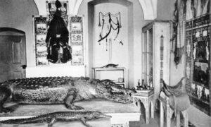 """Die """"Orientalische Sammlung"""" von Herzog Max in Bayern in Schloss Banz."""