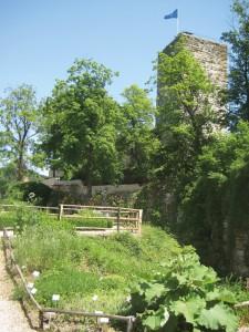 In der Burganlage in Pappenheim gibt es weitläufige Gärten, in denen Pflanzen der Volksmedizin ebenso wachsen wie Gewächse des Aberglaubens.